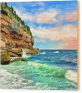 Pacific Coast At Big Sur Wood Print