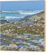 Pacific Coast Tide Pools Wood Print