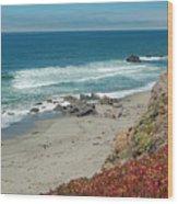 Pacific Coast View IIi Wood Print