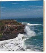 Pacific Coastline Wood Print