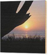 Pacific Cypress Sunset Wood Print
