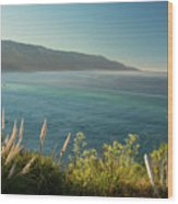 Pacific Ocean, Big Sur Wood Print