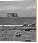 Pacific Ocean Coastal View Black And White Wood Print