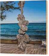 Pacific Rope Swing Wood Print