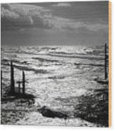 Pacific Silver Wood Print