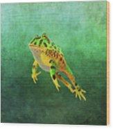 Pacman Frog Wood Print