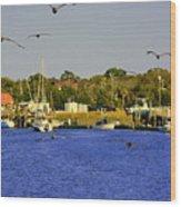 Paddle Boarders Vs Birds Wood Print