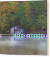Paddle Boats On The Lake Wood Print