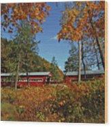 Paden Twin Covered Bridges Wood Print