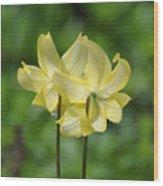 Pagoda Flower Wood Print