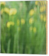 Pagoda Garden Wood Print