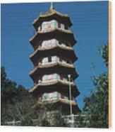 Pagoda In Taiwan Wood Print