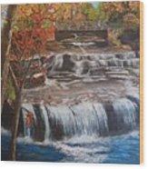 Paine Falls Wood Print