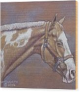 Paint Horse Wood Print by Dorothy Coatsworth
