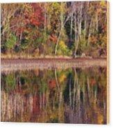 Paint Like Nature Wood Print