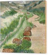 Paintbrush Trail Wood Print