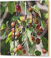Painted Berries Wood Print