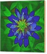 Painted Bluebonnet Wood Print