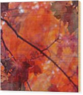 Painted Branches Abstract 5 Wood Print