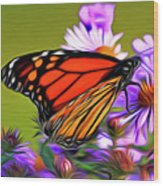 Painted Butterfly Wood Print