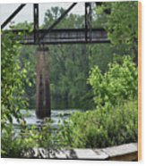Painted Congaree Four Wood Print