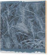 Painted Cyanotype Golden Wheat Wood Print