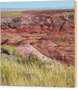 Painted Desert 0242 Wood Print