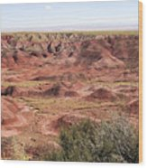 Painted Desert 0249 Wood Print