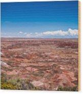 Painted Desert #10 Wood Print