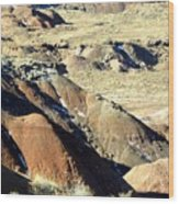 Painted Desert 11 Wood Print