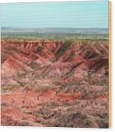 Painted Desert 3 Wood Print