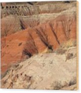 Painted Desert 3 Wood Print