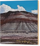 Painted Desert #5 Wood Print