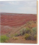Painted Desert 6 Wood Print