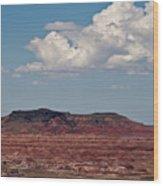Painted Desert #8 Wood Print