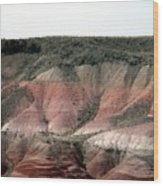 Painted Desert  Arizona Wood Print