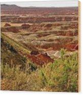 Painted Desert Panorama Wood Print