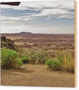 Painted Desert Vista Wood Print