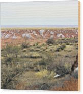 Painted Desert Winter 0571 Wood Print