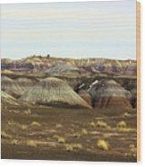 Painted Desert Winter 0576 Wood Print