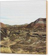 Painted Desert Winter 0583 Wood Print