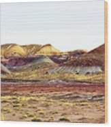 Painted Desert Winter 0602 Wood Print