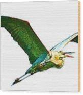 Painted Flight  Wood Print