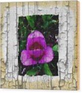 Painted Flower With Peeling Effect Wood Print