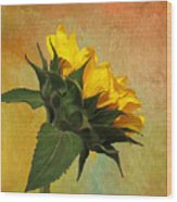 Painted Golden Beauty Wood Print