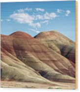 Painted Hills Colors Wood Print