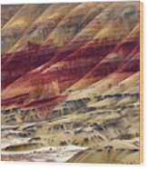 Painted Hills Contour Wood Print