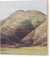 Painted Hills Wood Print