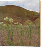 Painted Hills White Wildflowers Wood Print