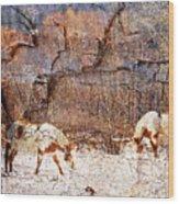 Painted Horses Wood Print